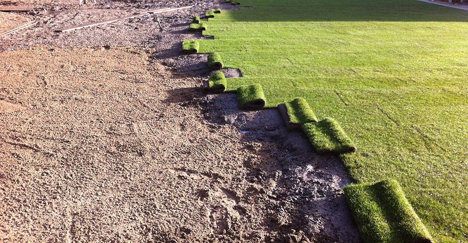 Cari Lawn Work in Progress
