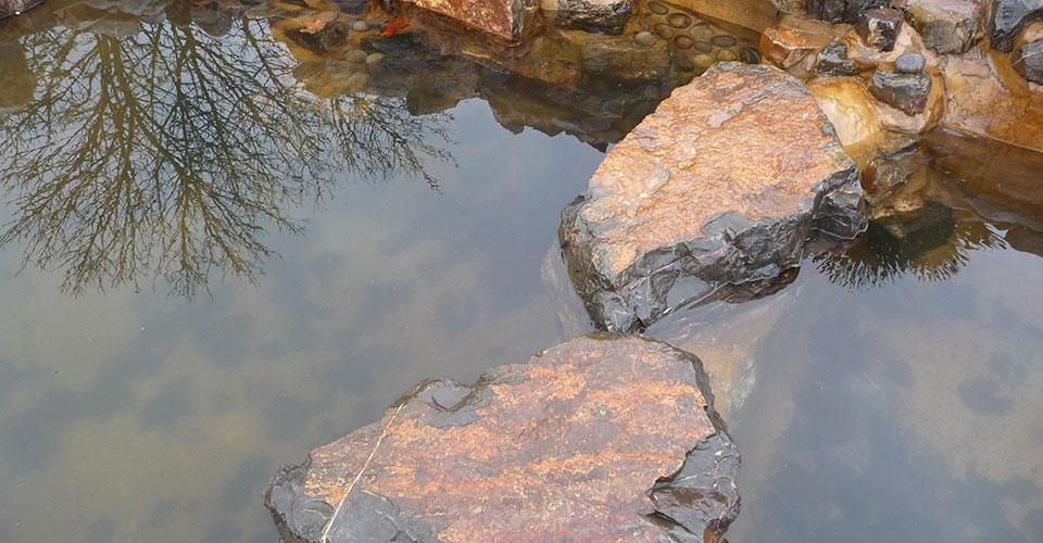Disney Water Feature